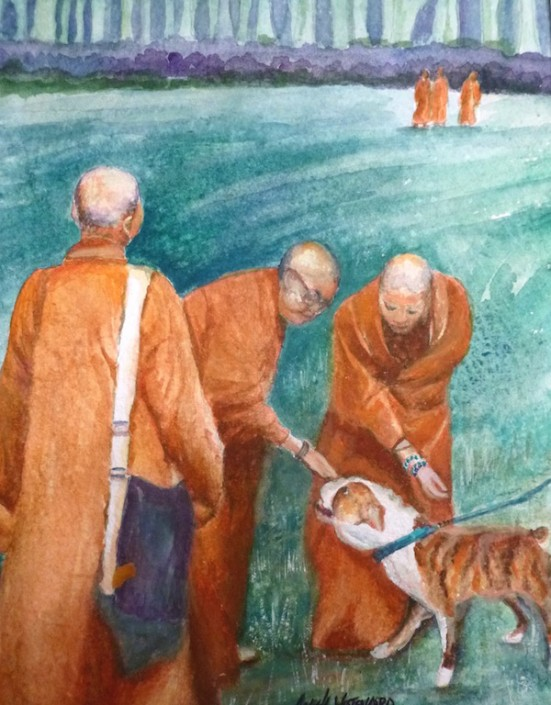 Tibetan monks in orange robes stop to pet a dog