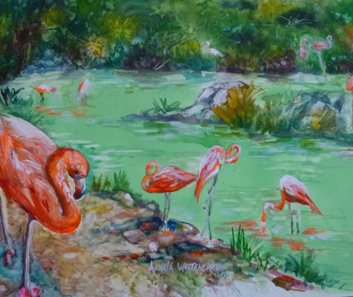 Pink flamingos in lake.
